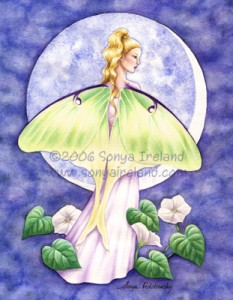 Luna Fairy web